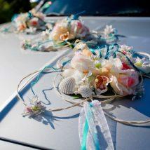 Noma-Auto dekors ar gliemežvākiem